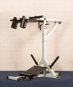Pendulum Squat and Calf Block