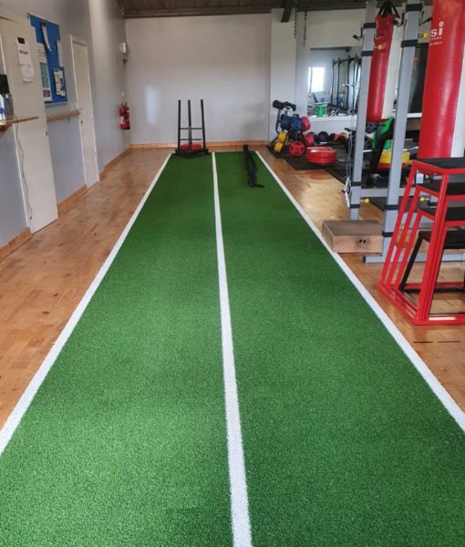 Gym Grass with White Lines